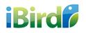 job in Ibird Brand Imaging LLP