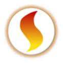 job in Consilium Software Inc