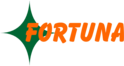 job in FORTUNA IMPEX PVT LTD