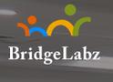 job in BridgeLabz Solutions LLP