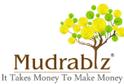 job in Mudrabiz Finance Company pune