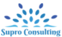 job in Iplace consultancy