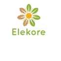 job in Elekore systems Private Limited
