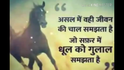 Aditi Kashyap