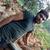 Bodakatla Venkata Prasad